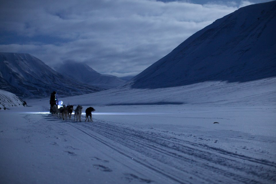 Travel by Dart: Svalbard – The Land You Cannot Die On [EP. 1]
