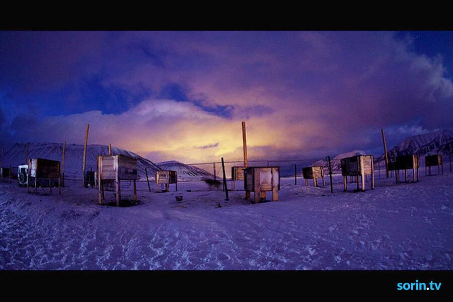 Svalbard Husky Tours